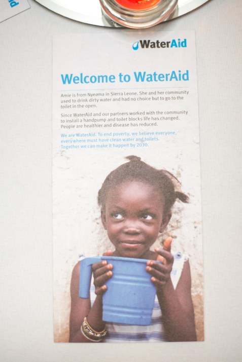 Water Aid leaflet at a charity event